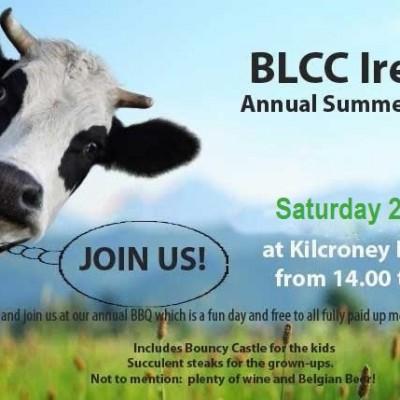 image of blcc bbq poster
